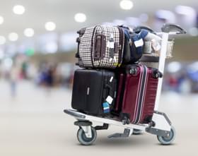 Tata Winger Tourist Airport Features